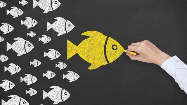 Are you Choosing the Right Influencer for your Business?